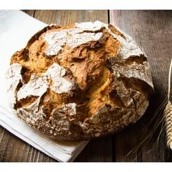 Spalter Bier-Brot